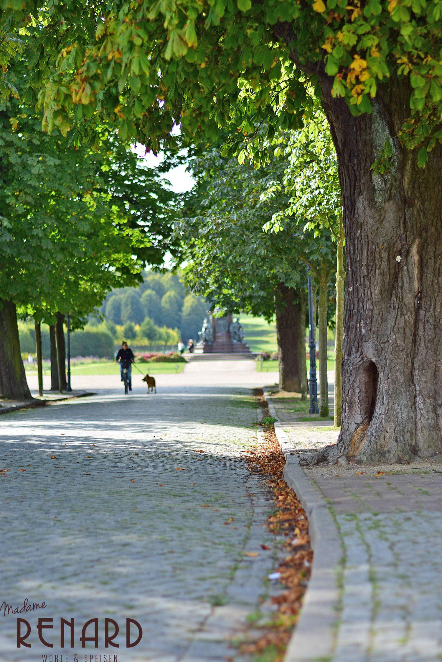 Schwerin-Rundgang, Foto: Madame Renard
