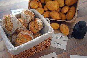 Die Revolution der Erdäpfel und ein Brötchen-Rezept